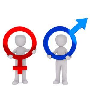 weiblich & männlich